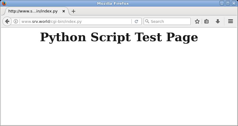 nginx cgi binary options