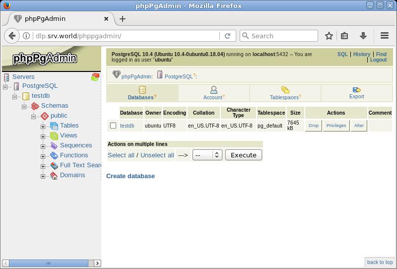 Ubuntu 18 04 LTS : PostgreSQL : Install phpPgAdmin : Server